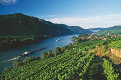 Plan Your Trip: ✓ Skiing ✓ Cities ✓ Lakes ✓ Hiking ✓ Spa ✓ Restaurants ✓Practical Travel Information ✓ Insiders' Tips ➢ Find out Austria, Wachau Valley, Danube River, Travel Information, Plan Your Trip, Holiday Destinations, World Heritage Sites, Cruise, Places