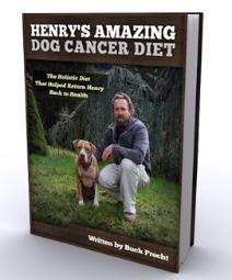 Hemangiosarcoma Dogs Natural Treatment