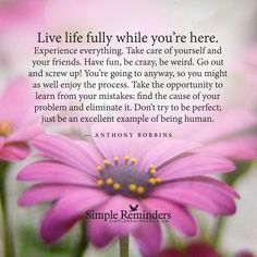 Live life fully while you're here. Experience everything. Take care of yourself and your friends. Have fun, be crazy, be weird. Go out and screw up! You're going to anyway, so you might as well enjoy the process. Take the opportunity to learn from your mistakes: find the cause of your problem and eliminate it. Don't try to be perfect; just be an excellent...