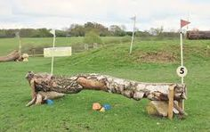 diy cross country jumps - Google Search