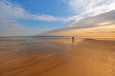 Lonely, Landscape Photography, Beach, Water, Outdoor, Gripe Water, Outdoors, The Beach, Scenery Photography