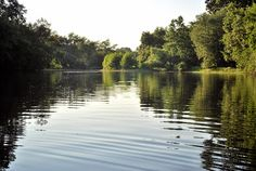 Litton's Fishing Lines: Raritan River Clean-Up Efforts Symbolic for Our Time