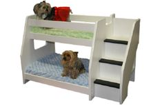New Pet Beds from Berg Furniture. Dogs on one of their original bunk bed designs. Dog Bunk Beds, Corner Bunk Beds, Pet Beds, Dog House Bed, Dog Spaces, Pet Resort, Bunk Bed Designs, Pet Furniture, Dog Houses