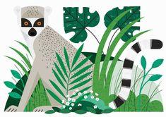 Lemur - - - - Sarah Abbott - - -