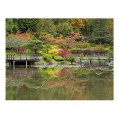 WA, Seattle, Washington Park Arboretum, Japanese Garden, with autumn color Jamie & Judy Wild / DanitaDelimont.com Seattle Japanese Garden, Seattle Washington, Postcard Size, Vacation, Autumn, Poster, Amp, Color, Products