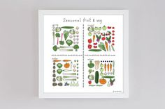 Seasonal Fruit and Veg  Square Hand Drawn Illustration by n0meo, £9.99