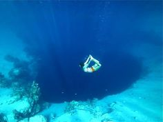 Dahab is a backpackers dream, cheap hotels, delicious food, raucous nightlife and awesome diving spots. The Blue hole is arguably the best backpacker spot for diving in the region. It is one of the best place to get some amazing, exciting and memorable diving experience. #Egypt #Bluehole #Diving