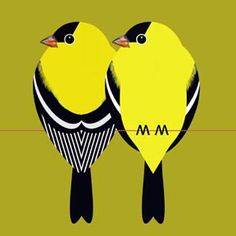 Scott Partridge - illustration - goldfinch pair on green