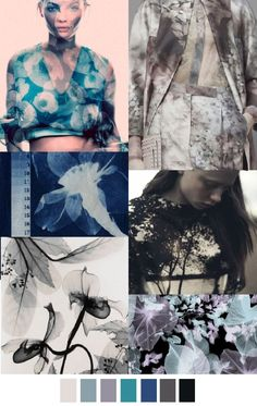 Cyanotypes, Distorted Florals