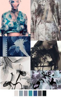 Cyanotypes, Distorted Florals