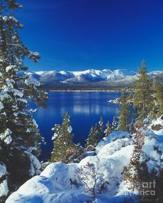 """The east shore of Lake Tahoe. Read Mike Makley's new """"Saving Lake Tahoe"""" to understand decades of work to Keep Tahoe Blue! Oh The Places You'll Go, Places To Travel, Lake Tahoe Winter, Lake Tahoe Skiing, Tahoe Snow, Lac Tahoe, Beautiful World, Beautiful Places, Winter Art"""