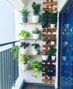 Simple Indoor Garden Design For Easy And Cheap Home Decoration Ideas Small Balcony Design, Small Balcony Garden, Small Balcony Decor, Balcony Plants, House Plants Decor, Plant Decor, Small Balconies, Balcony Gardening, Balcony Ideas