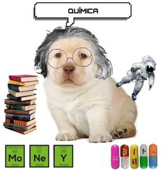 Book Wallpaper, Spanish Memes, Cute Animal Videos, How To Speak Spanish, Dog Memes, Just Kidding, Spongebob, Best Memes, Funny Images