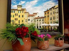 SPRING TIME IS ARRIVED. Come in Lucca to say good bye to winter time.