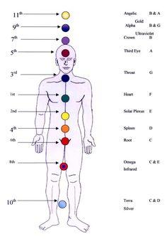 Vibrational Manifestation - 12 Chakra System Bird Watcher Reveals Controversial Missing Link You NEED To Know To Manifest The Life You've Always Dreamed Chakras, Kundalini Reiki, Chakra Meditation, Chakra System, Chakra Affirmations, Foot Reflexology, Health Heal, Body Anatomy, Sound Healing