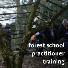 Kindling Website. Forest School and Training for Practitioners
