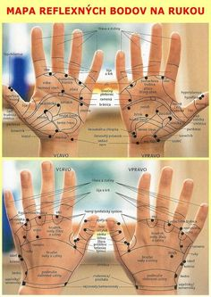 Mapa reflexnych zón na rukách Foot Reflexology, Workout Hairstyles, Acupressure, Health Advice, Tai Chi, Diet And Nutrition, Excercise, Workout Programs, Healthy Lifestyle