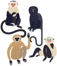 Monkeys - Laura Edelbacher Illustration & Graphic Design #illustration #animalillustration