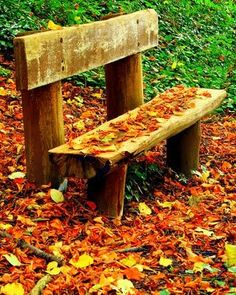 Park bench surrounded by colorful Fall leaves!