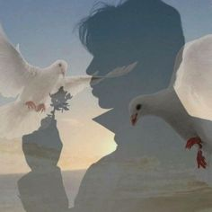 His Spirit Flies with the Doves