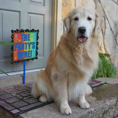 Jack will be 6 on Aug. 14th. Happy Birthday boy!