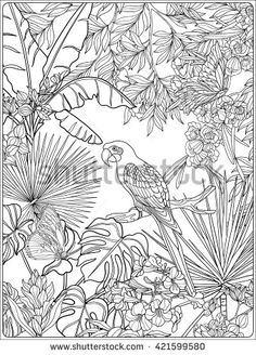 Find Tropical Wild Birds Plants Tropical Garden stock images in HD and millions of other royalty-free stock photos, illustrations and vectors in the Shutterstock collection. Thousands of new, high-quality pictures added every day. Tropical Quilts, Tropical Art, Tropical Garden, Doodle Canvas, Animal Line Drawings, Plant Painting, Silk Art, Plant Illustration, Art Mural