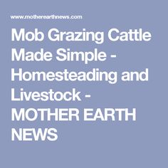 Mob Grazing Cattle Made Simple - Homesteading and Livestock - MOTHER EARTH NEWS