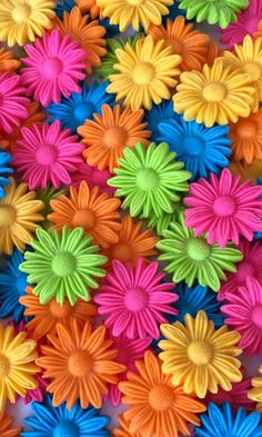 Rainbow of Daisies Wallpaper. Rainbow Wallpaper, Colorful Wallpaper, Flower Wallpaper, Wallpaper Backgrounds, Taste The Rainbow, Over The Rainbow, World Of Color, Color Of Life, Cellphone Wallpaper