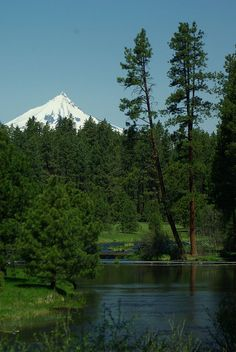 Metolius River with Mt. Jefferson, Oregon by oregonlahar, via Flickr