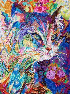 Cat by Danny Amazonas