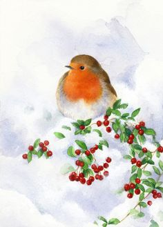 Lisa Alderson - LA - Robin And Snow