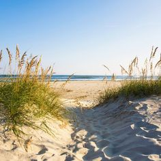 Ocracoke Island, North Carolina. There's no challenging the Outer Banks magic when it comes to beaches, and North Carolina's Ocracoke Island has 16 miles of pristine and undeveloped dunes and sweeps of wild sand that stretch east toward Cape Hatteras. Coastalliving.com