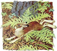Картинки по запросу Цветущая поляна сверху иллюстрация