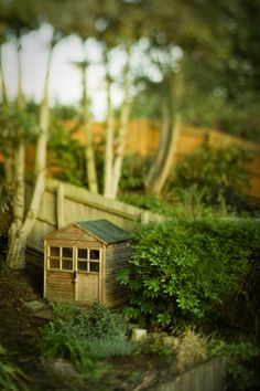 Can we talk about how much I love Tilt-Shift photography and films?