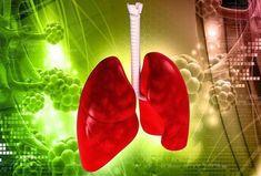 Πρόληψη του καρκίνου του πνεύμονα, με φυσική αποτοξίνωση Pleural Effusion, Medical News, Plant Leaves, Health, Face Care, Craft Ideas, School, Food, Health Care