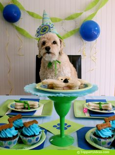 Blue and Green Dog Birthday Party. Our two have a birthday in March. Definitely going to use one of these ideas!