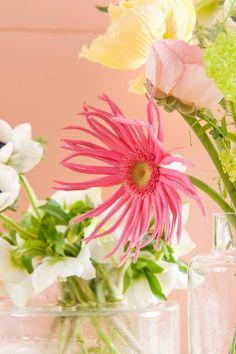 TAFELAANKLEDING - Bloemen van Loes - Bloemen van Loes Floral Arrangements, Flowers, Flower Arrangement, Wreaths, Flower Arrangements, Table Arrangements, Garland, Floral Arrangement