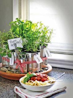 Идеи для выращивания зелени на кухне