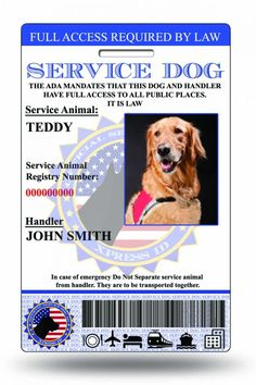 XpressID Holographic Emotional Support Dog ID Card (Custom) Includes Registration To National Dog Registry *** Find out more about the great product at the image link. (This is an affiliate link and I receive a commission for the sales) Id Digital, Emotional Support Animal, Support Dog, Dog Id Tags, Dog Items, Therapy Dogs, In Case Of Emergency, Animal Cards, Service Dogs
