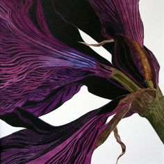 Irene Helen MacKenzie - Amaryllis (Unframed) Medium: Hand Coloured Linocut Image size: 19cm x 19cm