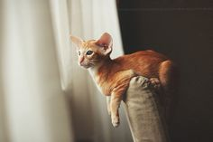 Waiting for the birdies | Flickr - Photo Sharing!