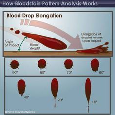48 best forensic bloodstain pattern analysis images on pinterest howstuffworks stringing sine and spatter shapes im studying to become a special effects artist i swear fandeluxe Choice Image