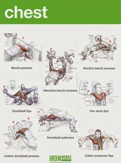 #pectorales #desarrollo #muscular #Entrenador. #personal #trainer #coach #licenciado #colegiado www.rubenentrenador.com