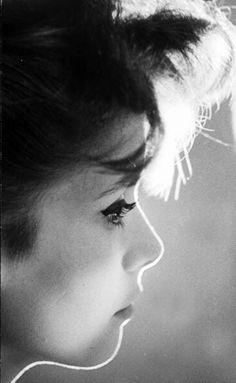 Catherine Deneuve, 1961. Photo: Loomis Dean.