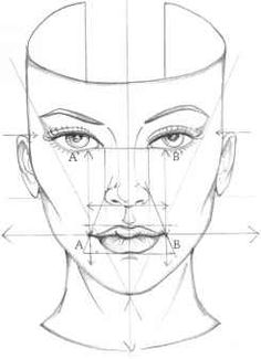 diagram of where everything should be when you sketch a face. so helpful :)