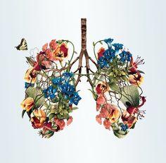 Flower wings? Flower lungs? Pretty regardless. - Imgur