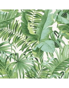 Tropical Leaf Wallpaper Palm Tree White Green A Street Prints Paste The Wall £20 a roll