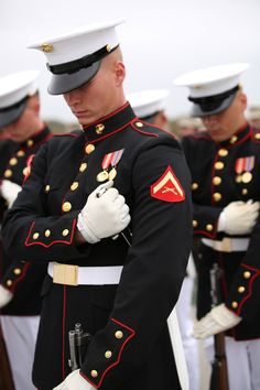 Greatness marines