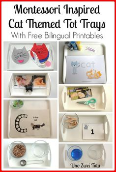 Montessori Inspired Cat Themed Trays for Toddlers and Preschoolers