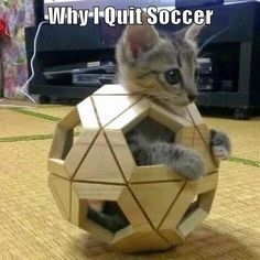 Why I Quit Soccer http://cheezburger.com/9032948736